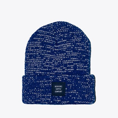 herschel-supply-co-abbott-youth-beanie-surf-the-web-reflective